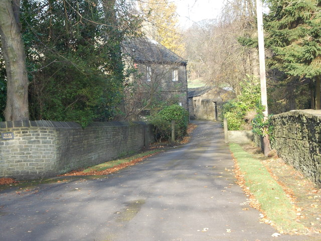 Driveway to Giles House - Newton Park