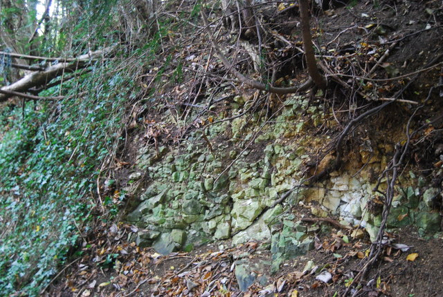A small outcrop of chalk