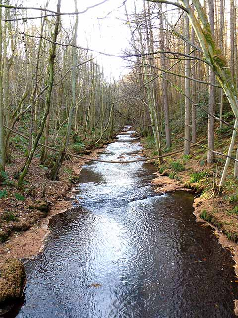 Reaston Burn