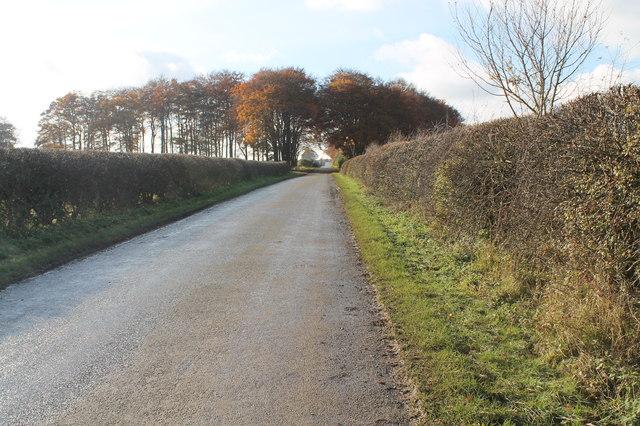 Hallington Road