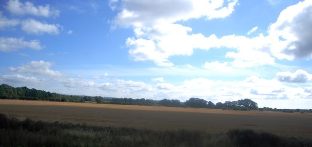 Farmland near Ashford