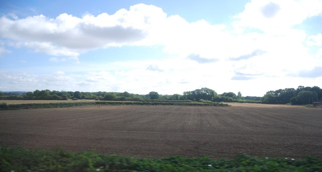 Farmland, Brisley Farm