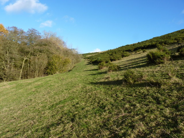 Footpath in the valley of the Rowley Brook