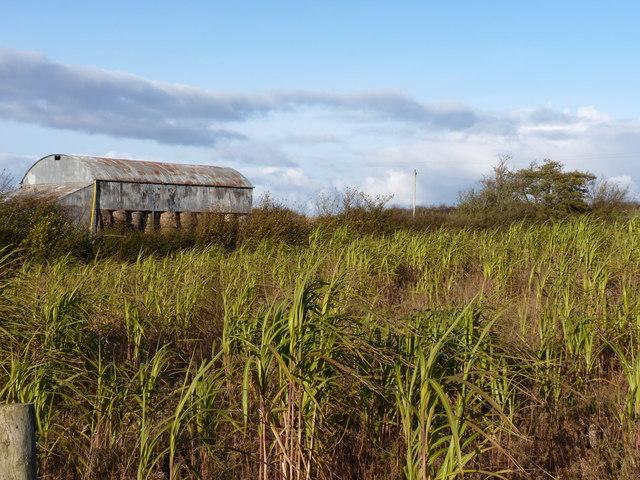 Dutch barn near Haywood Farm