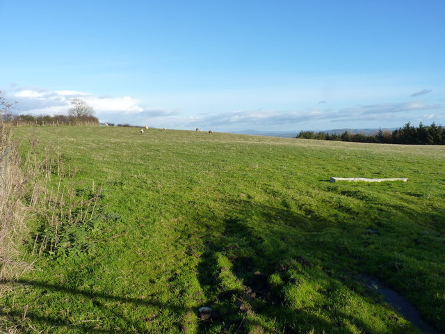 A field above Haywood Farm