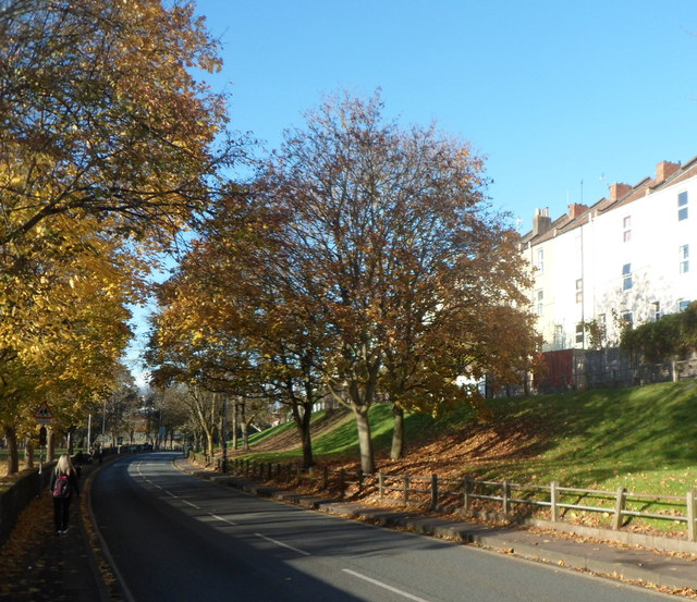 Late autumn in St Luke's Road, Bristol