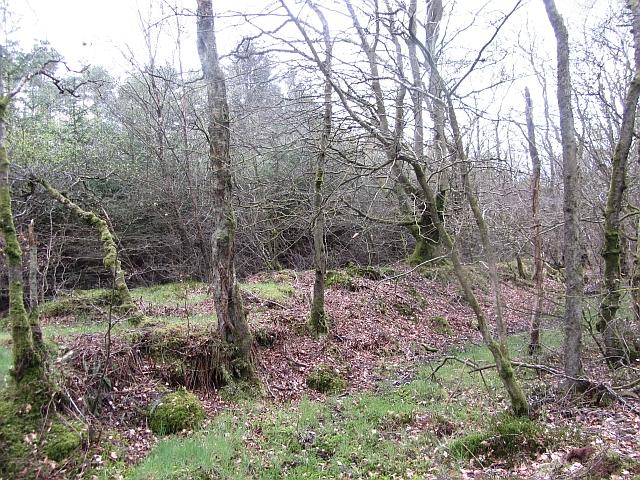 Roman road, Loch Wood