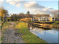 SJ8997 : Ashton Canal, Bridge 14 by David Dixon