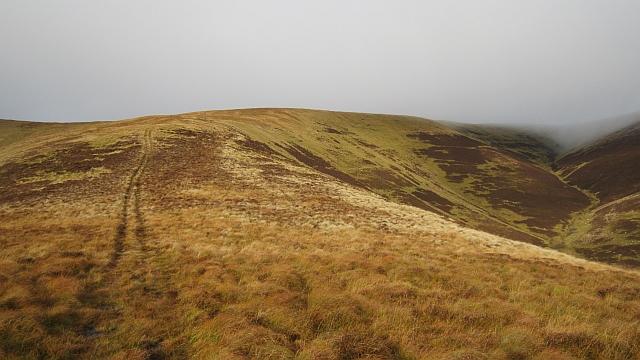 Ridge, Glenharvie Moss