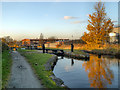 SJ8998 : Ashton Canal, Lock 15 (Clayton) by David Dixon