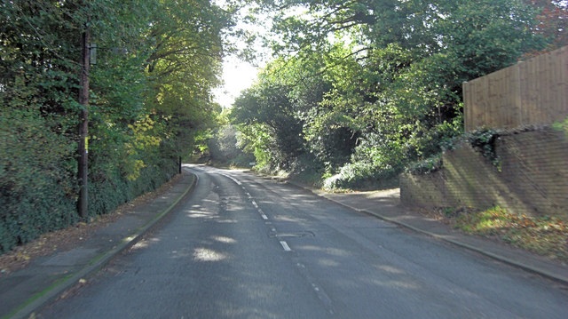 A283 southeast of Witley