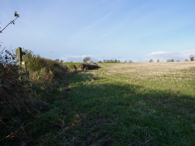 Footpath through a stubble field