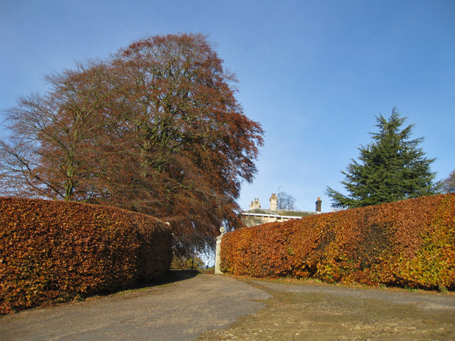 Autumnal approach to The Hall