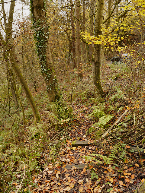 Footpath Below Compstall Brow