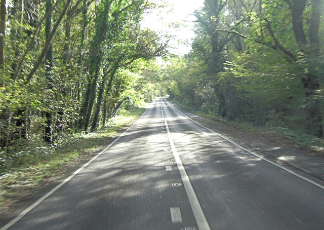 A283 west of Hambledon Hurst