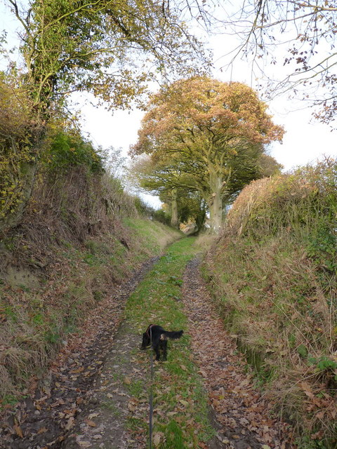 A rather damp byway aboveBroomhill