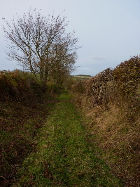 The byway to Oaks Farm