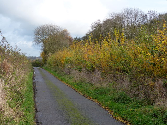 Houghton Lane at Clarke's Bush