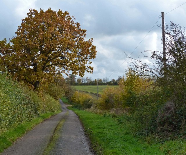 Autumn along Houghton Lane
