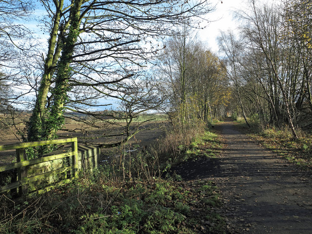 Lanchester Valley Railway Walk