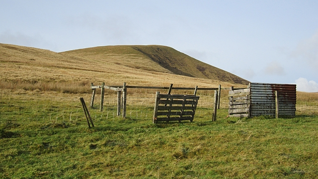 Sheep  pen on Leishfoot Hill