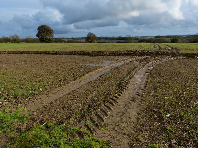 Tyre tracks across the fields
