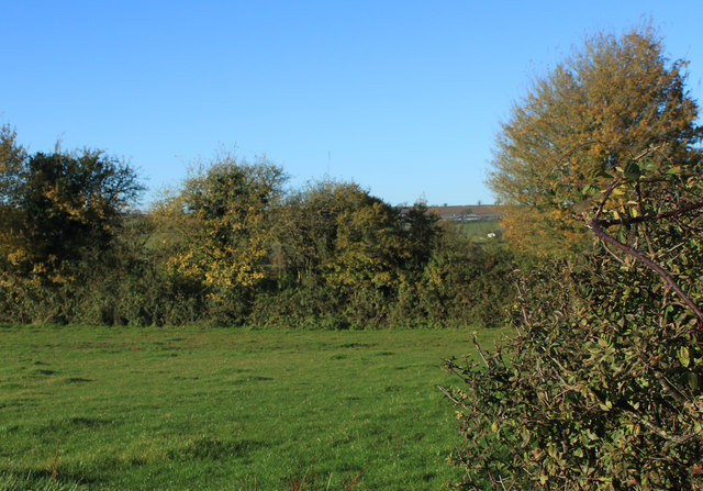 2012 : North from a field gate off Norton Lane