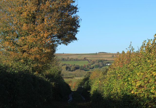 2012 : Farm track leading to fields off Norton Lane