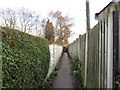 SE3612 : Warren Walk, Royston by Ian S