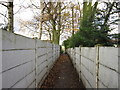 SE3612 : A path towards Common Lane, Royston by Ian S