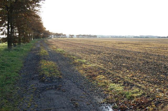 Farm road near Beckett's Bridge