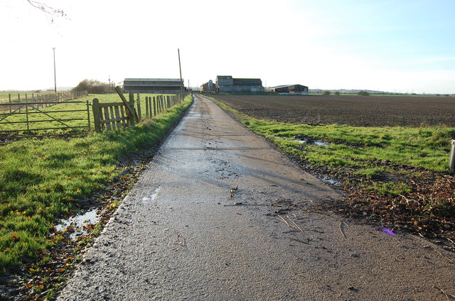 Road to New Buildings Farm