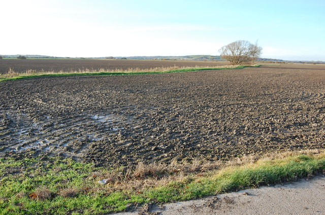 Farmland near New Buildings Farm