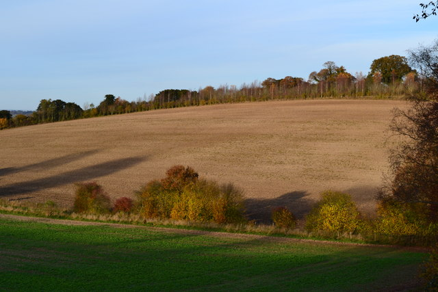 View across dry valley near Furzedown