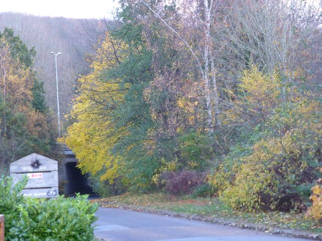 Nedge Lane, Telford
