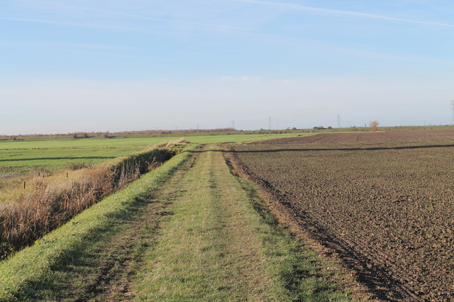 Farm track near Duck Farm