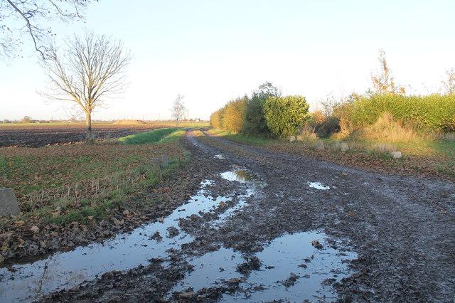 Muddy track off Frampton Roads