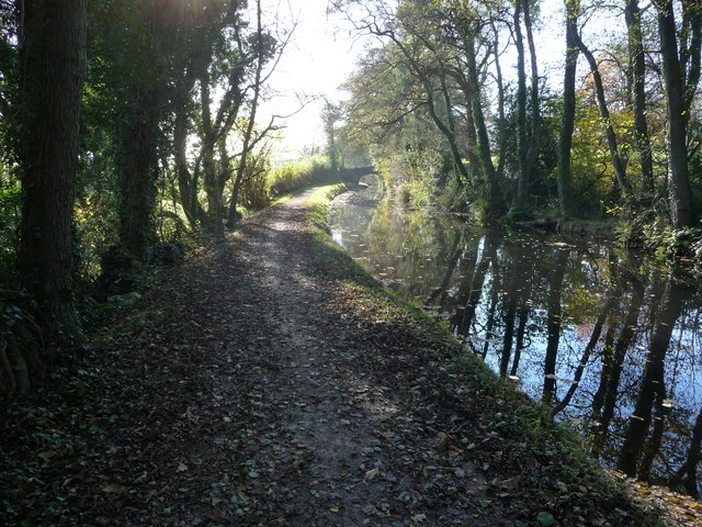 Part of the Mon. & Brec. Canal near Mamhilad