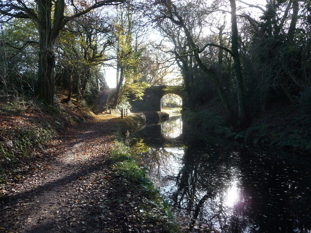 Canal bridge at Mamhilad