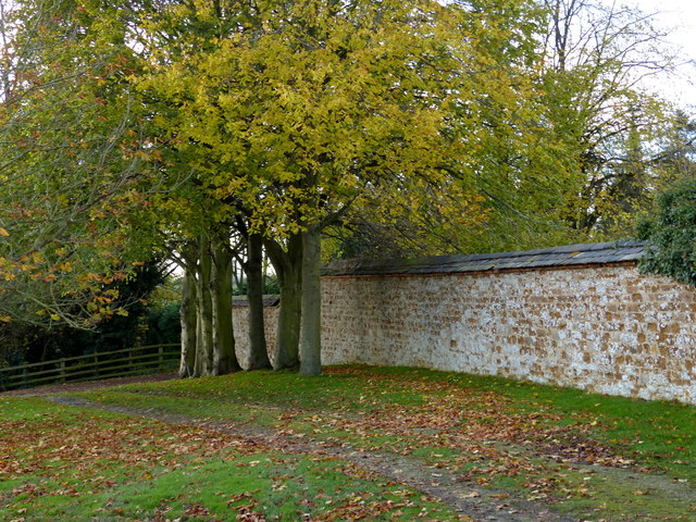 Wall and trees at Ingarsby Old Hall