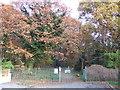 TQ3170 : Biggin Wood, Norbury by Malc McDonald