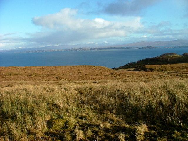 Grassland near Rigg
