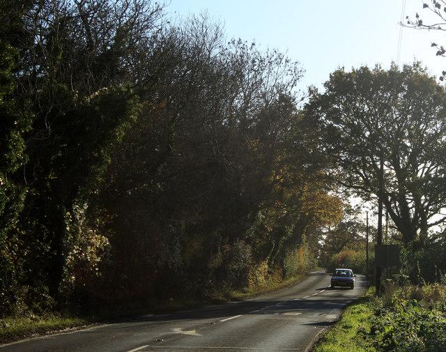 2012 : Limeburn Hill