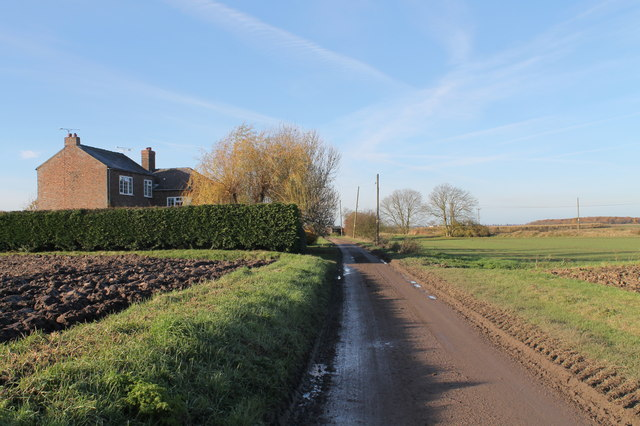 Blows Lane at Home Farm