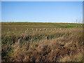 TL3779 : Landfill site off Long Drove by Hugh Venables