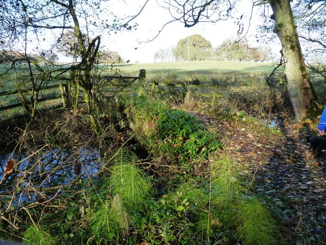 Bridleway bridge near New Guild