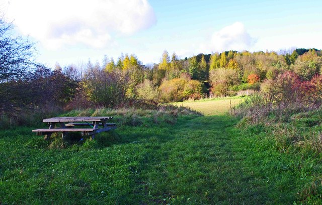 Droitwich Community Woods Nature reserve - picnic table &amp; path, Droitwich