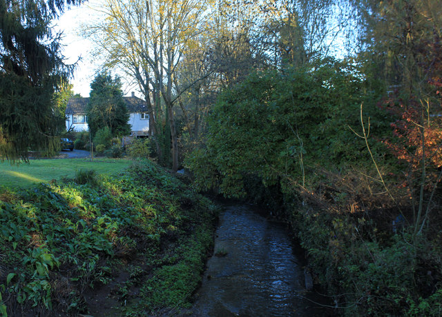 2012 : The Winford Brook, Chew Magna