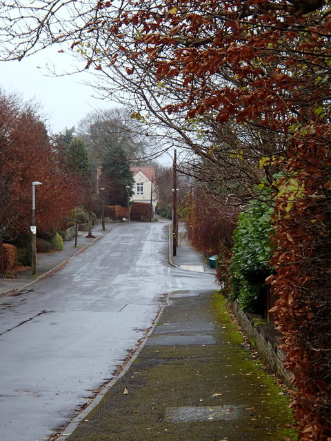 Gilleyfield Avenue, Dore