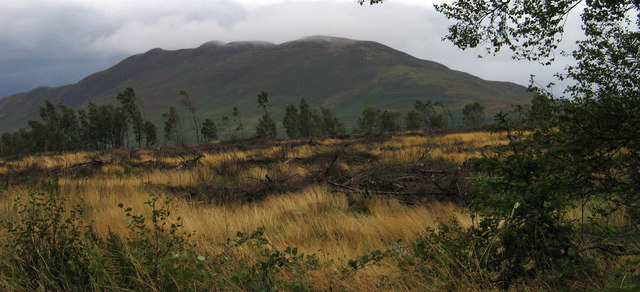 Clear-felled plantation beside West Highland Way